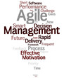 Agile Management word cloud