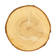tree trunk cross section, isolated, clipping path included