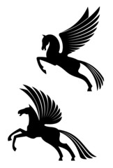 Pegasus winged horses