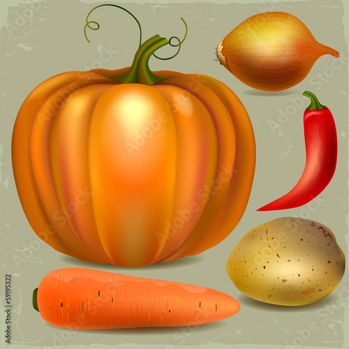 Set of fresh vegetables, illustration