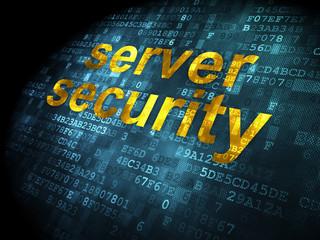 Security concept: Server Security on digital background