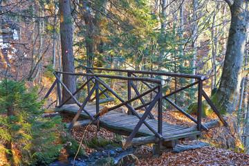 Wooden bridge in woods