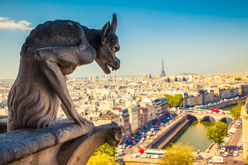 Gargoyle on Notre Dame Cathedral