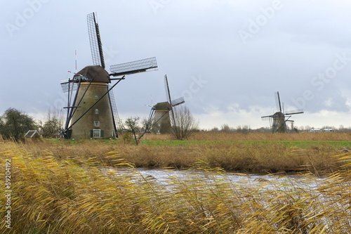 dutch authentic windmills