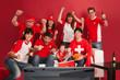 Happy Swiss sports fans