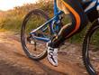 Mountain bike detail outdoors