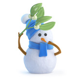 Cute snowman under the mistletoe