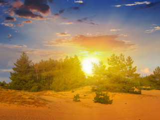 quiet sunset scene