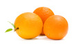 Close up of three oranges, isolated