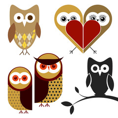 vector owl illustrations