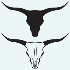 Skull of a bull isolated on blue background