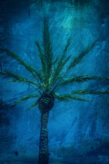 grunge palm tree