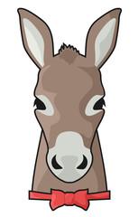 Elegant donkey