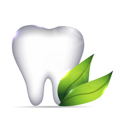 White Tooth and green leafs