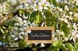 Schild zwischen Kirschblüten, Frohe Ostern