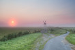 misty summer sunrise over Dutch farmland