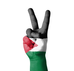 Hand making the V sign, Palestine flag painted