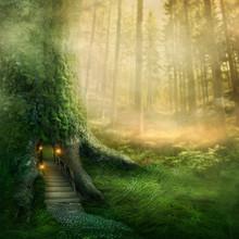 Fantazja domek na drzewie