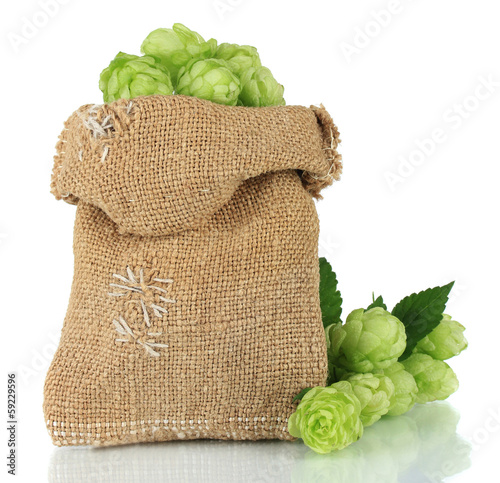 Fresh green hops in burlap bag, isolated on white