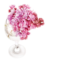 Lilac bouquet in a glass.