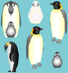 Collection of isolated Emperor Penguins