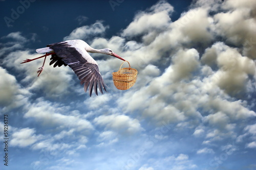 stork bringing baby in basket