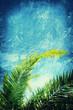 grunge palm leaf