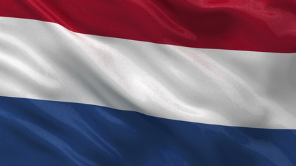 Flag of the Netherlands waving in the wind - seamless loop