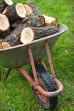 An old wheelbarrow full of firewood