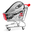 computing mouse in a shopping cart, symolizing the online shoppi