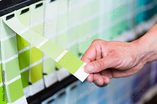 farbauswahl an grüntönen - 59256921