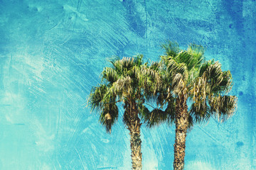 textured palm trees