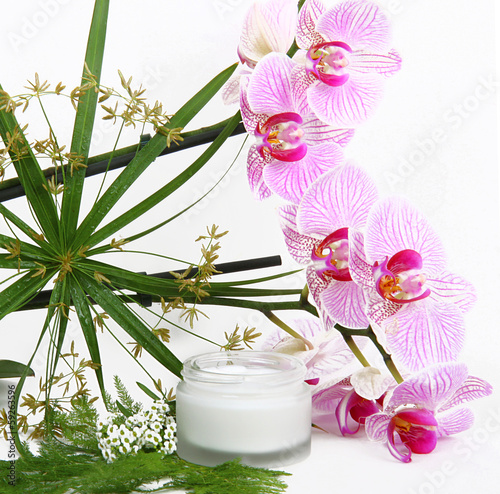Face cream with herbs and pink orchids