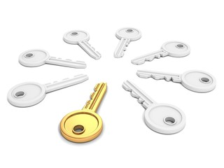 different golden key in other white crowd