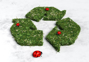 Ladybirds on recycling symbol