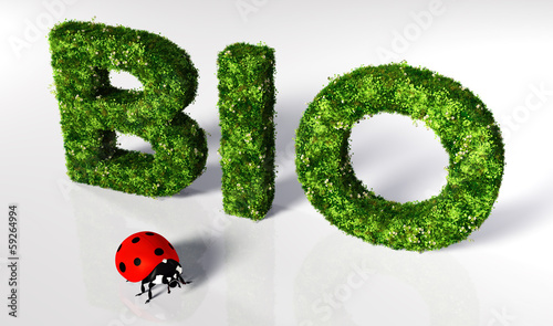Ladybirds with bio text