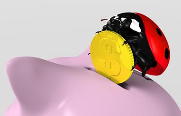 Ladybug saves money