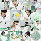 Scientists work in laboratory