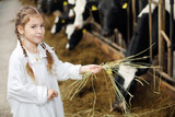 Happy cute little girl in white robe holds hay for cows