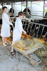 Boy stands near wheelbarrow with hay and woman work next to him