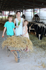 Happy mother, son and daughter stand near barrow at cow farm.