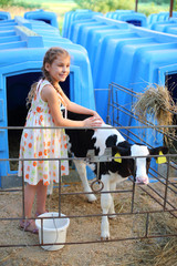 Happy little girl caresses cute calf at cow farm at sunny day