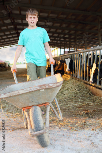 Boy in green rolls empty wheelbarrow at large cow farm