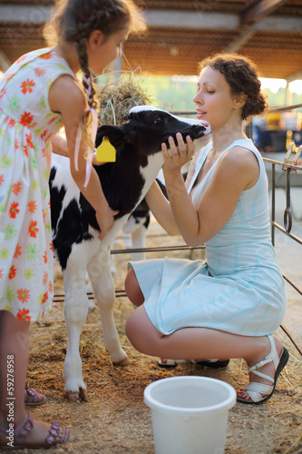 Happy little girl and her mother caress calf at cow farm