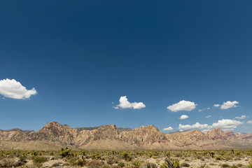 Arizona landscape view