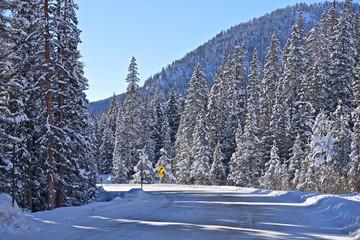 Colorado Winter Road Landscape