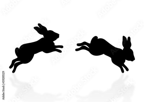 Hüpfen Hase Vorlage Bilder Exodencar Gq