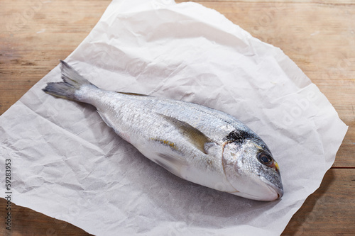 Raw gilt head bream