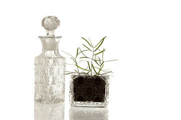 Crystal glass bottle and plant
