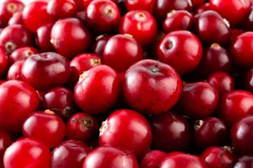 Red ripe cranberries macro. Food background